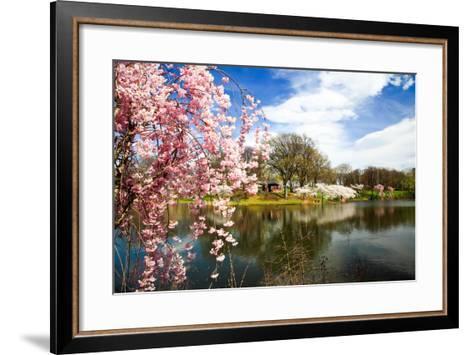 The Cherry Blossom Festival in New Jersey-Gary718-Framed Art Print