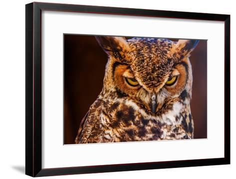 Great Horned Own-duallogic-Framed Art Print