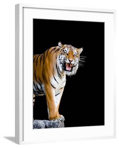Bengal Tiger-Lipik-Framed Art Print