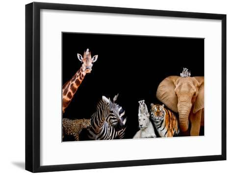 A Group of Animals are Together on A Black Background with Text Area. Animals Range from an Elephan-Art9858-Framed Art Print