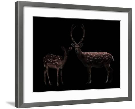 Deer, Dear--Framed Art Print