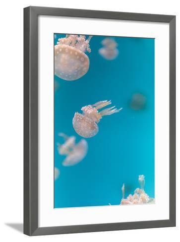 Spotted Lagoon Jelly, Golden Medusa-steffstarr-Framed Art Print