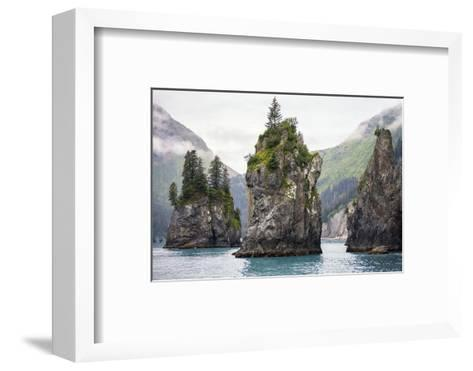 Sea Stacks, Kenai Fjords National Park, Alaska-Steven Schremp-Framed Art Print