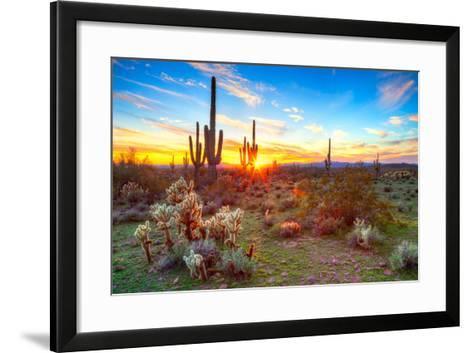 Sonoran Desert-Anton Foltin-Framed Art Print