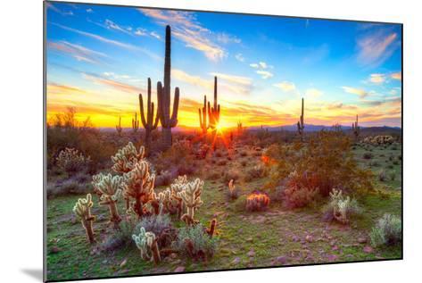 Sonoran Desert-Anton Foltin-Mounted Photographic Print