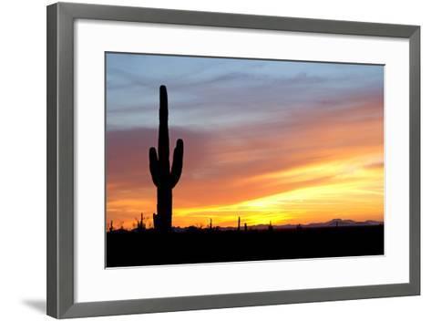 Desert Sunset with Saguaro Cactus-Christina E-Framed Art Print