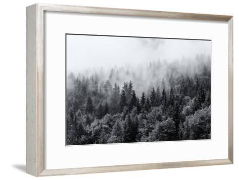 Misty Forests of Evergreen Coniferous Trees in an Ethereal Landscape with Low Laying Mist or Cloud-PlusONE-Framed Art Print