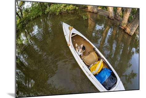Corgi Dog in a Decked Expedition Canoe on a Lake in Colorado, a Distorted Wide Angle Fisheye Lens P-PixelsAway-Mounted Photographic Print