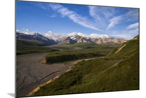 Denali National Park-Steven Schremp-Mounted Photographic Print