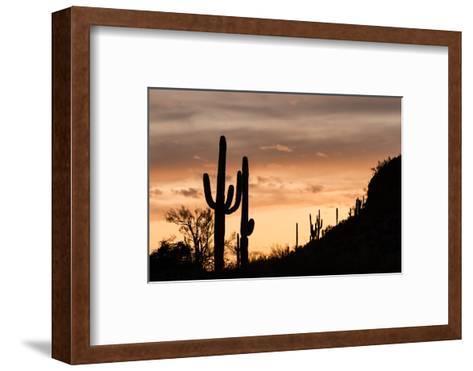 Saguaro Cactus-wollertz-Framed Art Print