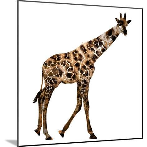 The Jaguar Patterned, Beautifully Confused Giraffe--Mounted Photographic Print