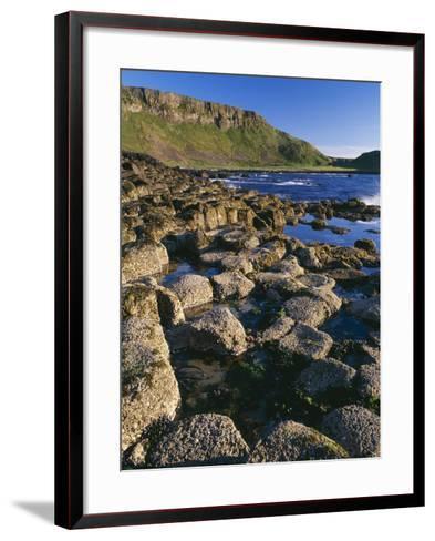 Ireland Giant's Causeway, Hexagonal Basalt Columns--Framed Art Print