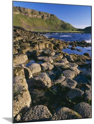 Ireland Giant's Causeway, Hexagonal Basalt Columns--Mounted Photographic Print