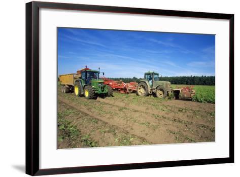 Farming Harvesting Potatoes--Framed Art Print