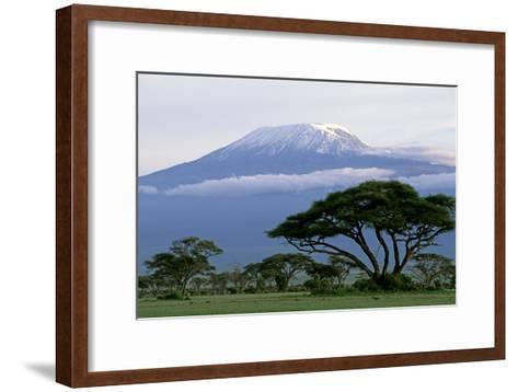 Mt Kilimanjaro in Tanzania--Framed Art Print