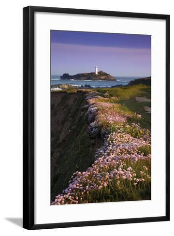 Godrevy Thrift in Flower--Framed Art Print