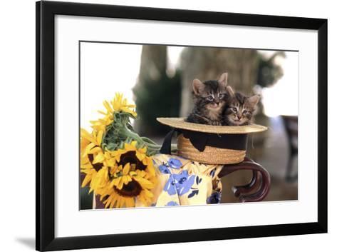 Kittens in Hat with Flowers--Framed Art Print