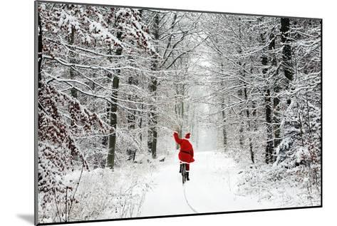 Father Christmas Riding Bicycle Through Beech--Mounted Photographic Print