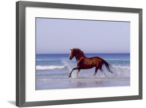 Horse Trotting Through Waves in Sea--Framed Art Print