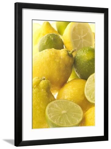 Lemons and Limes Close-Up--Framed Art Print
