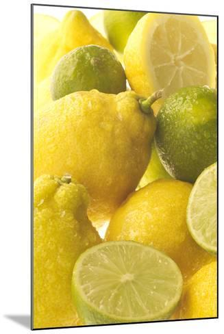 Lemons and Limes Close-Up--Mounted Photographic Print