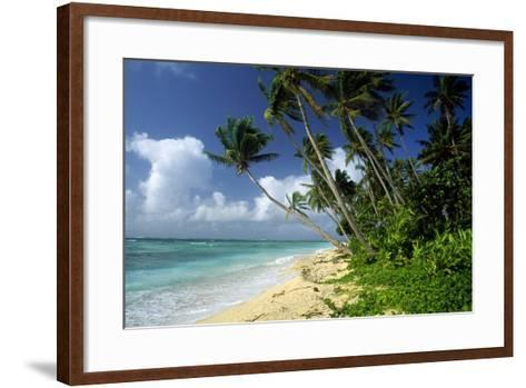 Fiji One of the Best Shelling Beaches in the World--Framed Art Print