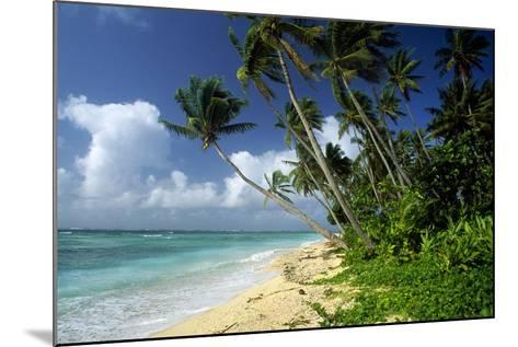 Fiji One of the Best Shelling Beaches in the World--Mounted Photographic Print