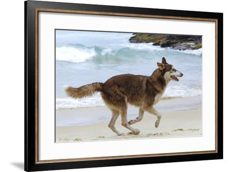 Playing on the Beach--Framed Art Print