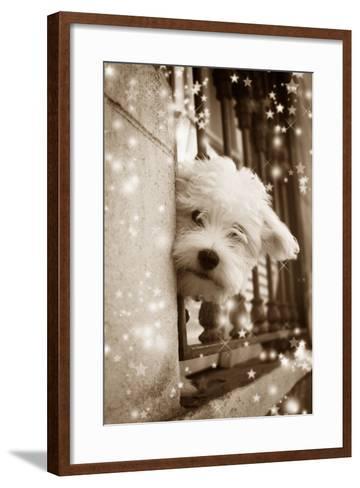 Peering Out of Window--Framed Art Print