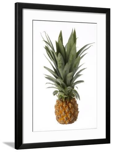 Pineapple--Framed Art Print
