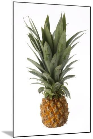 Pineapple--Mounted Photographic Print