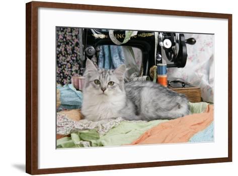 Tiffanie with Sewing Machine--Framed Art Print