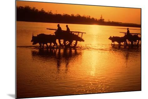 Nepal Loaded Bullock Carts Crossing Rapti River at Sunset--Mounted Photographic Print