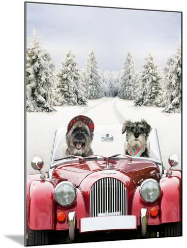 Driving Car Through a Snow Scene--Mounted Photographic Print