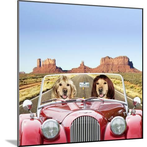 Golden Retrievers Driving Car Through Desert Scene--Mounted Photographic Print