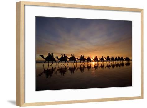 Camel Safari Famous Camel Safari on Broom's Cable--Framed Art Print