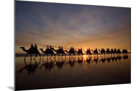 Camel Safari Famous Camel Safari on Broom's Cable--Mounted Photographic Print