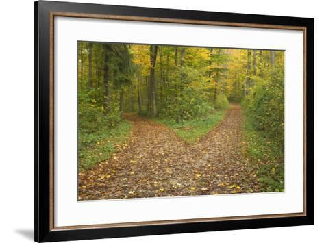 Crossroads Showing Fork in Path Where a Country--Framed Art Print