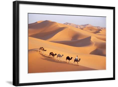 Morocco Camel Train, Berber with Dromedary Camels--Framed Art Print