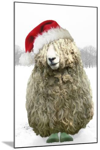 Longwool Sheep Wellington Boots Wearing Christmas Hat--Mounted Photographic Print