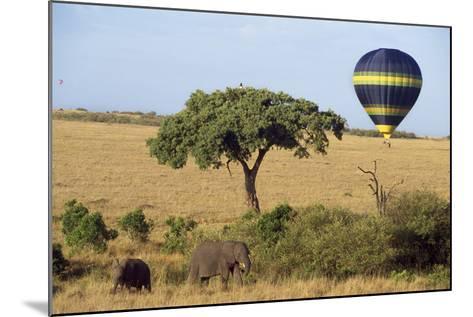 Safari, Hot-Air Balloon--Mounted Photographic Print