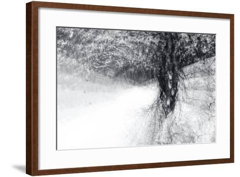 Snow Dancer-Ursula Abresch-Framed Art Print