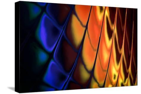 Fancy Glass-Ursula Abresch-Stretched Canvas Print