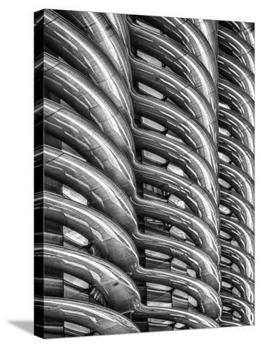 Rib Cage in Mono-Adrian Campfield-Stretched Canvas Print