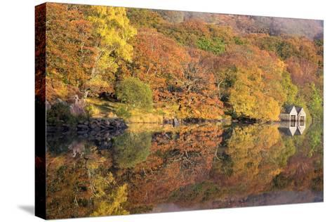 Lazy Days-Doug Chinnery-Stretched Canvas Print