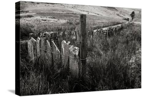 The Last Path-Doug Chinnery-Stretched Canvas Print