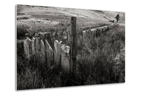 The Last Path-Doug Chinnery-Metal Print
