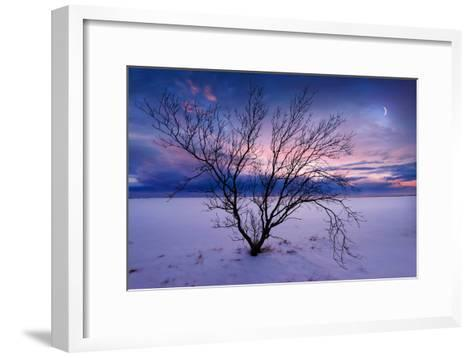 Cold Moon-Philippe Sainte-Laudy-Framed Art Print