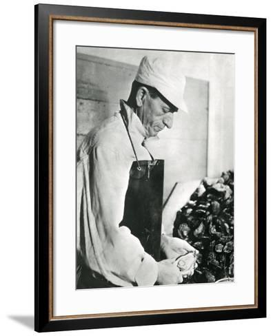 Opening Oysters 1930s--Framed Art Print