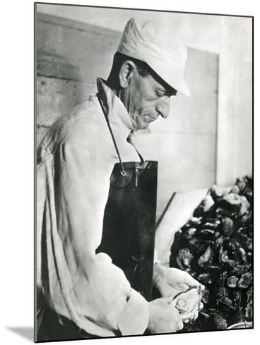 Opening Oysters 1930s--Mounted Photographic Print